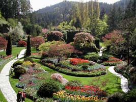 Walk to the Butchart Gardens and enjoy the Sunken Garden